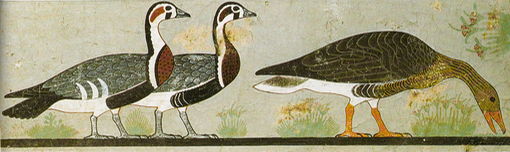 Painting of three geese, found in the tomb of Nefermaat at Meidum.