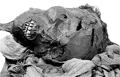 The mummy of Seqenenre shows that this king died a violent death, perhaps on the battlefield.