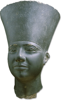 Head of a statue of Userkaf